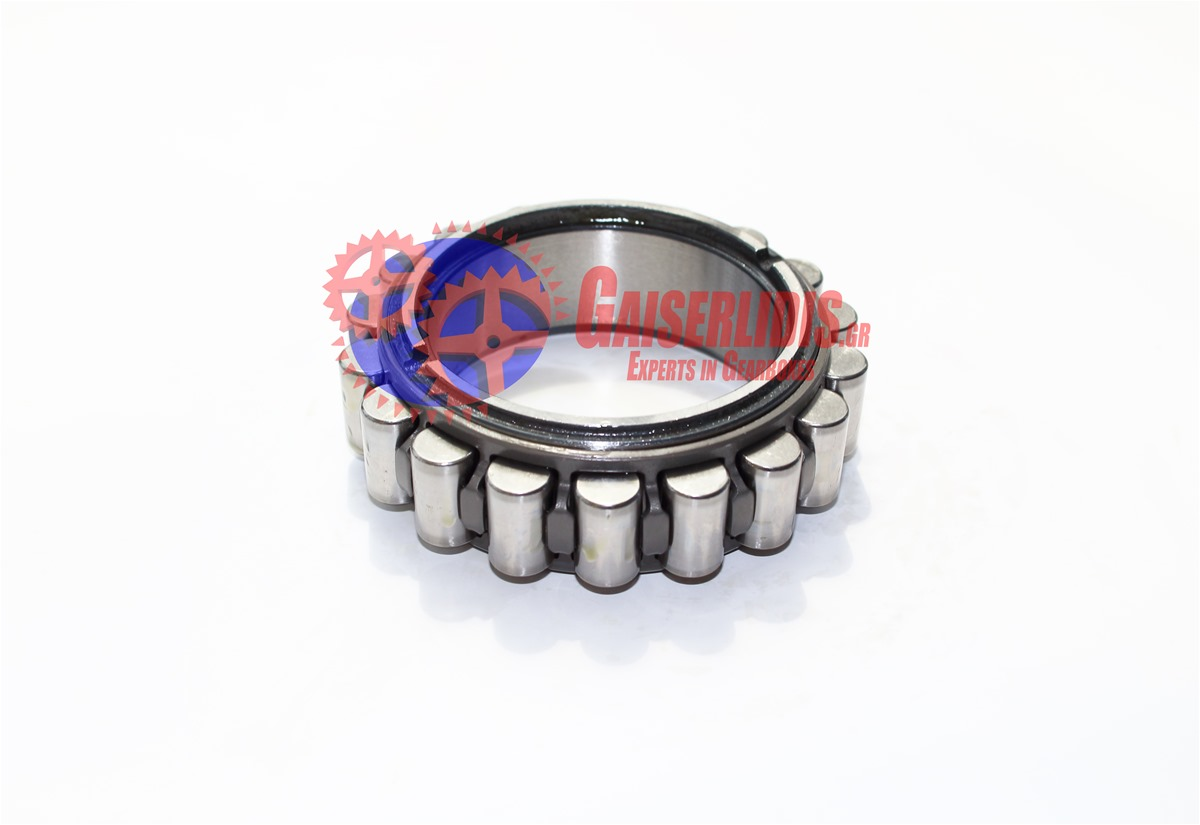 Cylindrical Roller Bearing 0750118198 0750118198